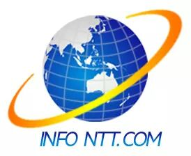 Foto logo infott.com