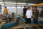Ibrahim Medah bersama Bupati Sabu Raijua saat berada di pabtik rumput laut