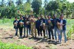 Mahasiswa Fapet Undana yang PKL di Desa Rainyale, Sabu Raijua